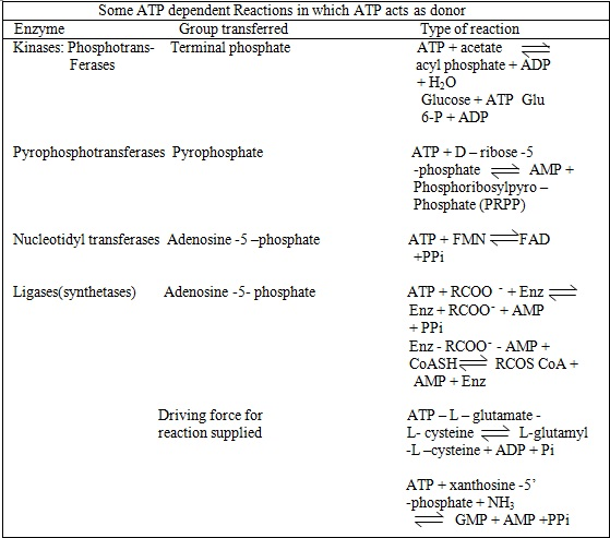 ATP dependent reactions in which atp acts as donor