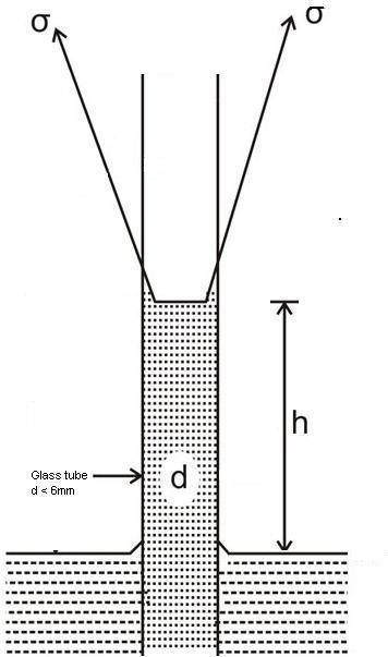Fluid mechanics homework help