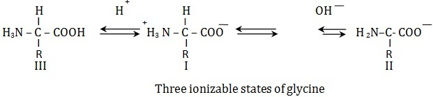 three ionizable states of glycine