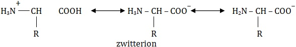 zwitterion