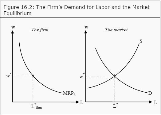 labor demand in the long run Sub producer theory short run labor demand long run labor demand elasticity of from econ 152 at university of california, berkeley.